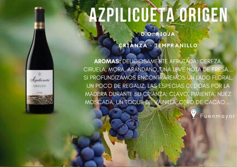 Azpilicueta Origen
